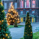 Kensington Palace Christmas Lights 2016