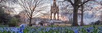 Royal Parks Visitor Satisfaction Research